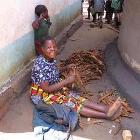 Globalna kampania antynikotynowa uderza w Malawi
