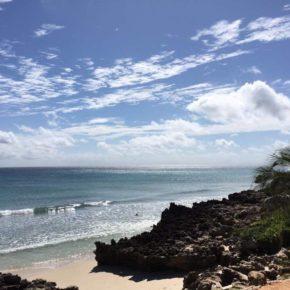 Marzenia w tropikach czyli jak inwestować w Mozambiku