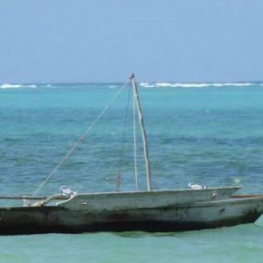 30,000 kilometrów wybrzeża – Afrykańskie rybołóstwo i hodowle