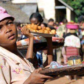 Udział kamerunskich rolników w Sprawiedliwym Handlu na przykładzie spółdzielni w Gaschidze